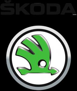 Skoda mechanics
